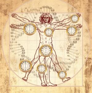 Vitruvian Man and CLOCKS